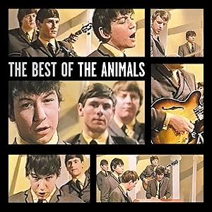 animals-1987